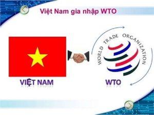Việt Nam gia nhập WTO năm nào thuận lợi và khó khăn?