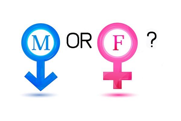 Female vàmale là gì?