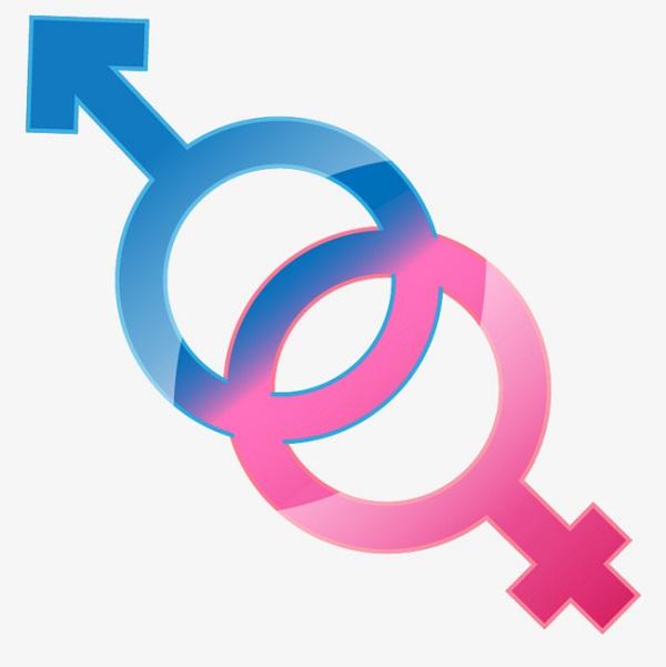 Male và Female thường xuất hiện ở đâu?